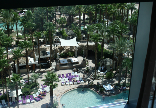 View of the pool from the standard room.