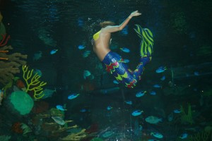 Mermaid Rosalie Raymond does a backflip to entertain guests at the Silverton aquarium