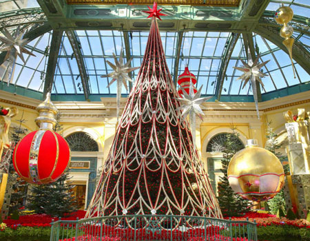 Bellagio Conservatory's winter display