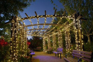 0143_winter_lights_garden_trellis