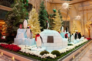 Adorable penguins adorn this year's display
