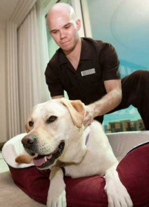 Trump massage therapist Elliott Reed and celebrity pup Misty-Marley (Photo by Erik Kabik)