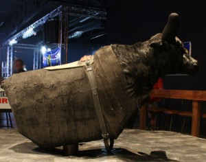 The mechanical bull at Stoney's.