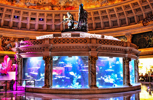 There's a quick way to get to the Atlantis aquarium in The Forum Shops at Caesars.