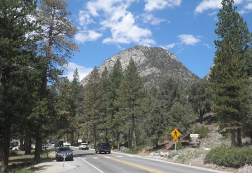 The Fletcher Canyon trailhead at Mount Charleston