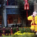 Bellagio Conservatory Chinese New Year 2014