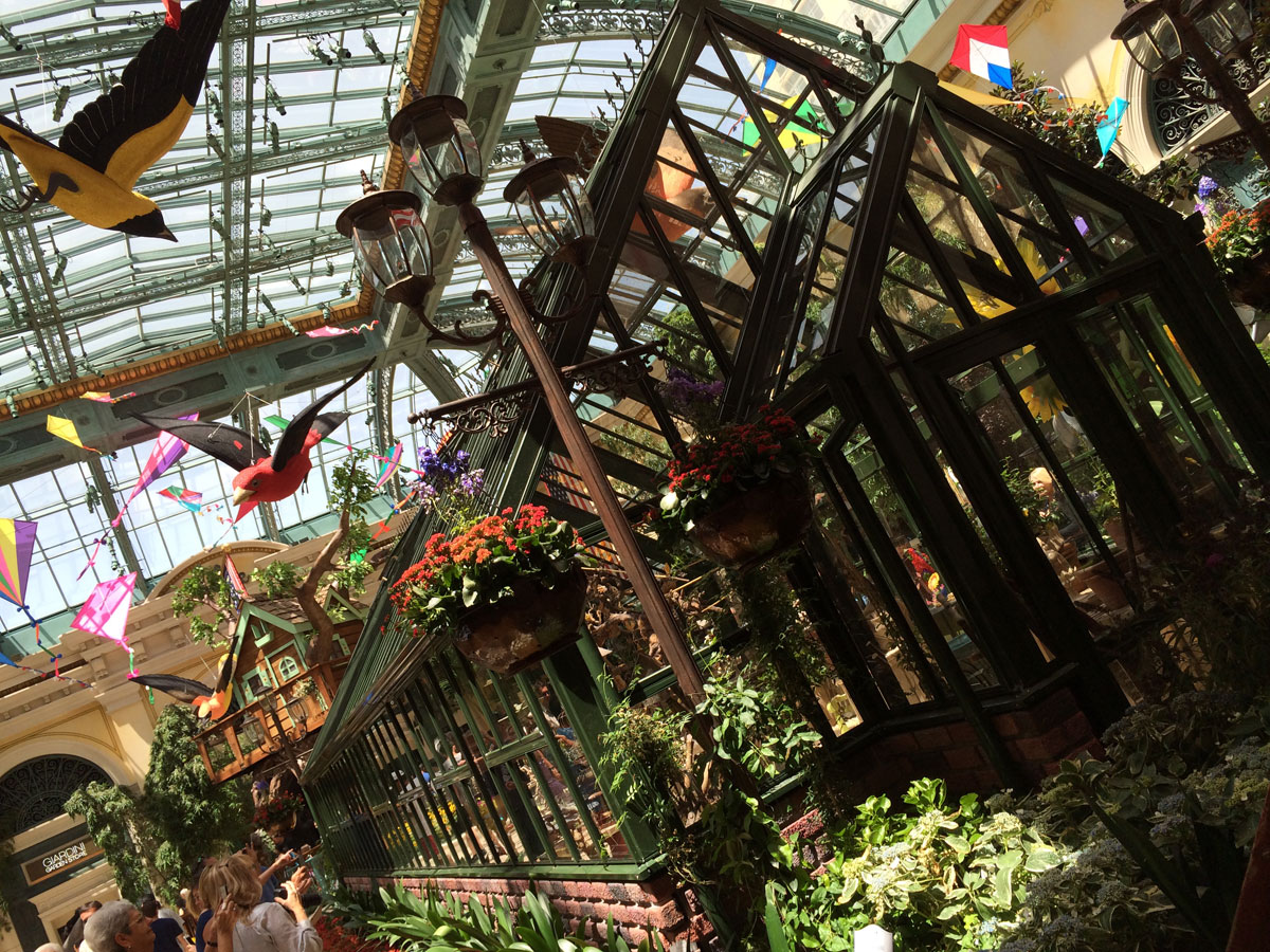 Summer blooms at the Bellagio Conservatory | Las Vegas Blogs
