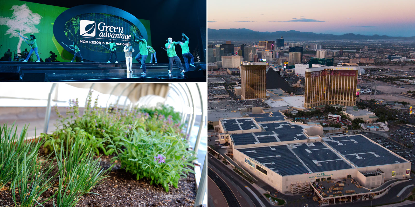 MGM Resorts International's Green Advantage program, Bellagio's herb garden and Mandalay Bay's solar installation
