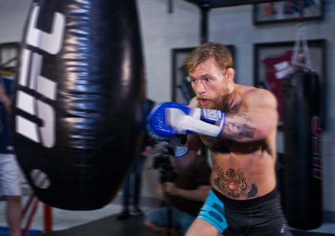 Conor McGregor working out. Tiger on his stomach just along for the ride. Photo courtesy of the Las Vegas Sun.
