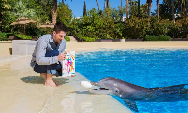 Bob Ross ain't got nothin' on Flipper. Photo courtesy of the Secret Garden.