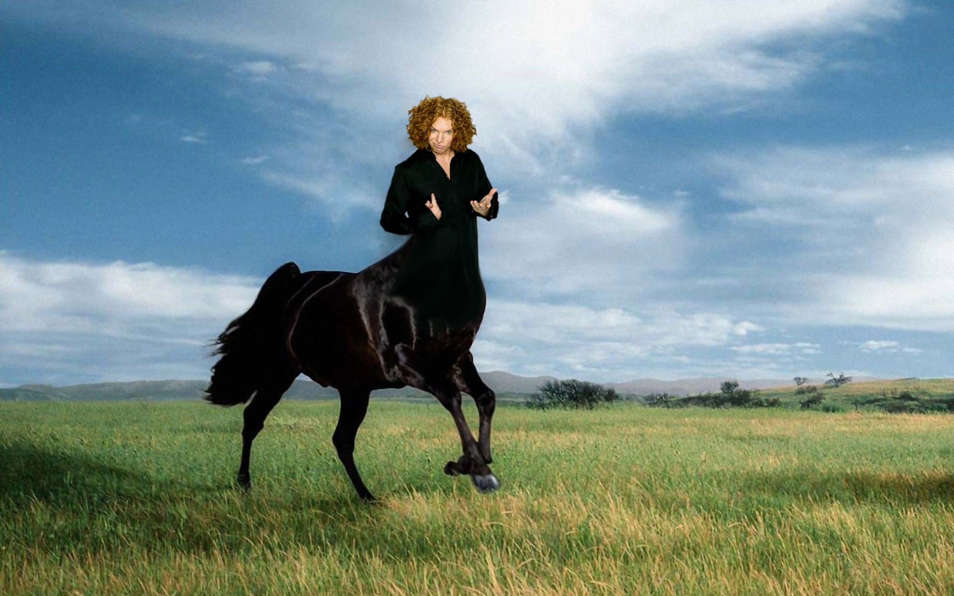 Yay or neigh? Here is what we imagine a 'Centaur Top' to look like.