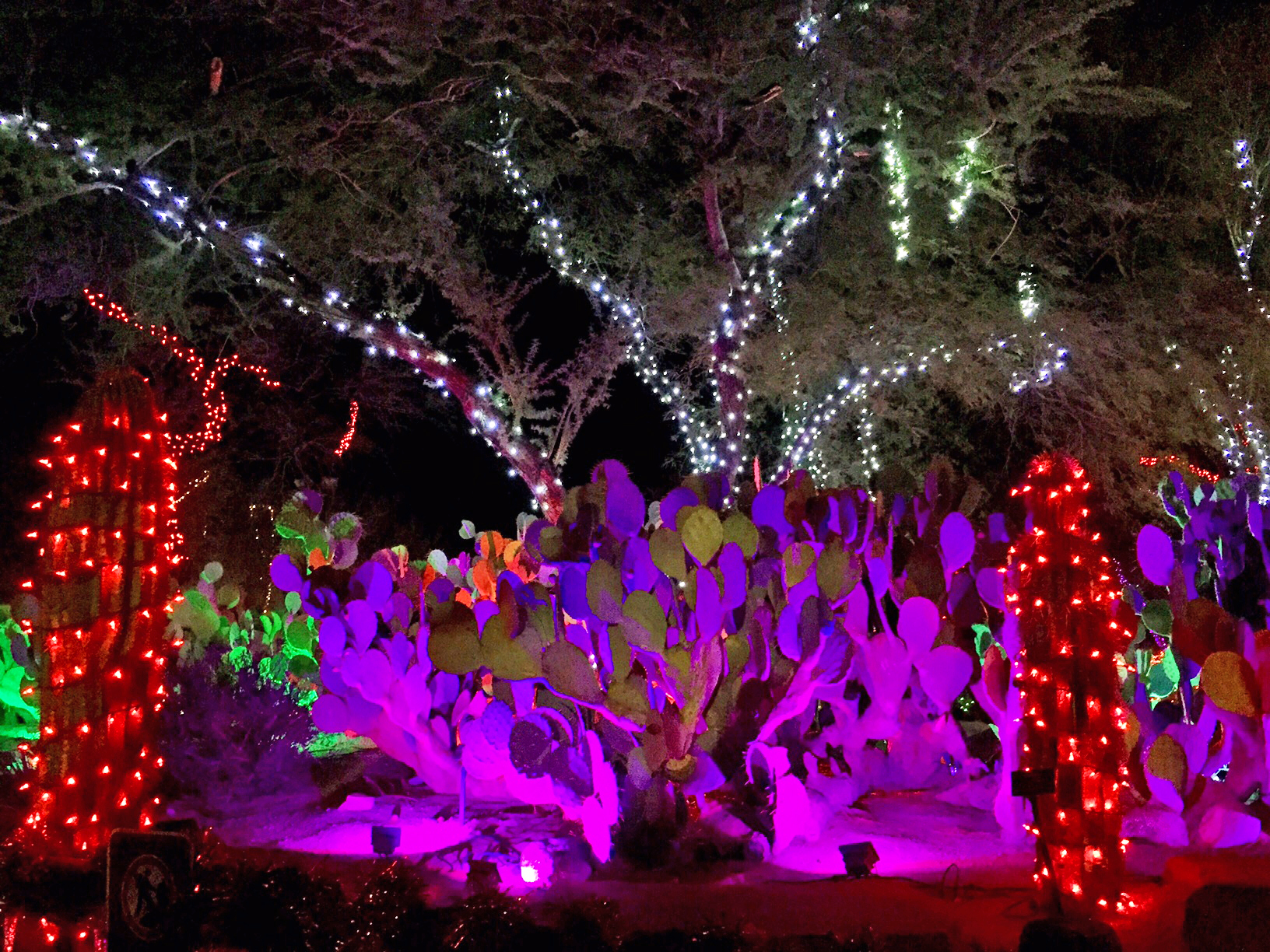 Check out the cactus garden at Ethel M, decked out in half a million lights. Photo by Ashley Oñoz-Wright/Vegas.com.