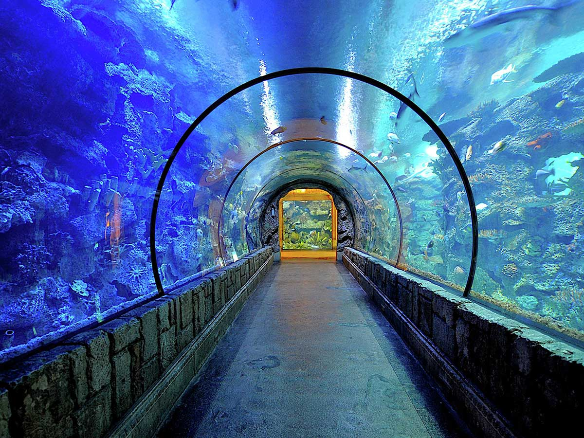 Beat the heat with these Las Vegas Indoor Attractions – Las
