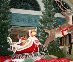 Bellagio unveils a holiday wonderland in the Conservatory