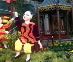 Bellagio Conservatory celebrates the Year of the Horse