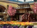 East meets West at the Bellagio's new Japanese spring exhibit